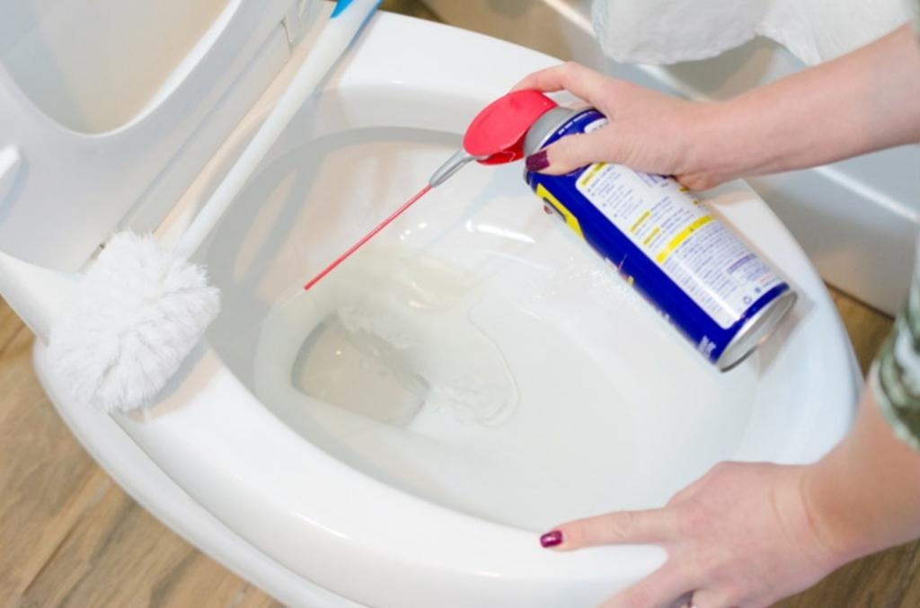 she sprays wd 40 into the toilet bowl and 1 minute later. Black Bedroom Furniture Sets. Home Design Ideas
