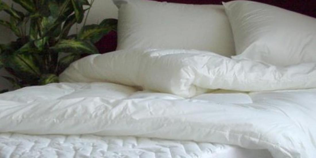 Learn how to disinfect mattresses and pillows easily