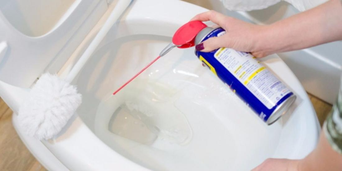 She sprays WD-40 into the toilet bowl and 1 minute later, mission accomplished!