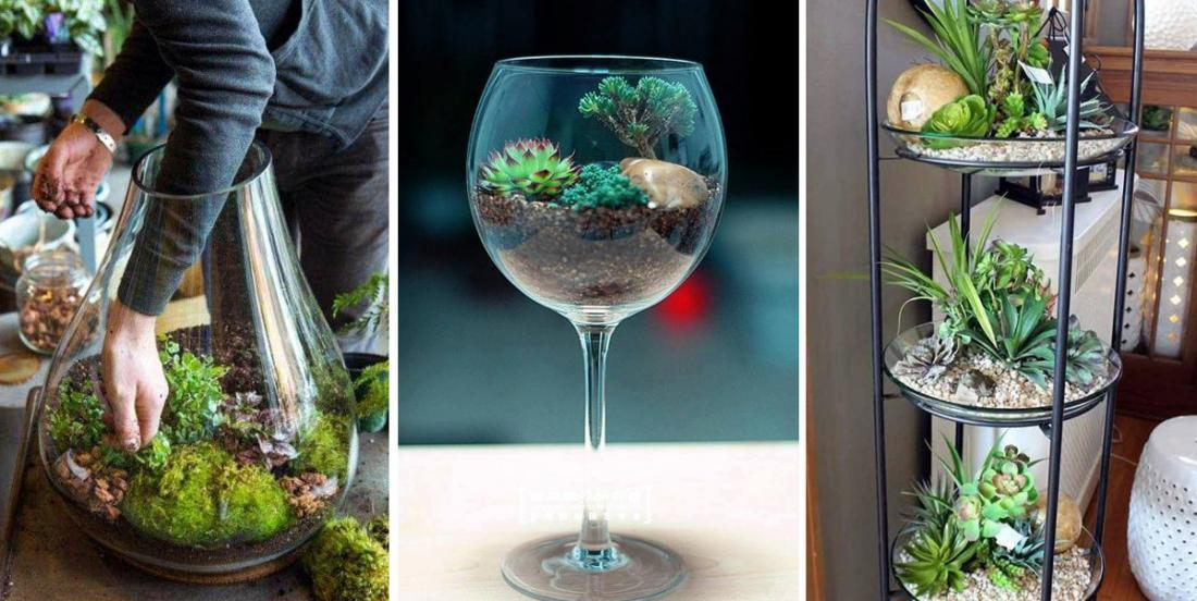 Why do you grow plants in pots, when you can do so much better? Here are 14 deco-plant ideas!