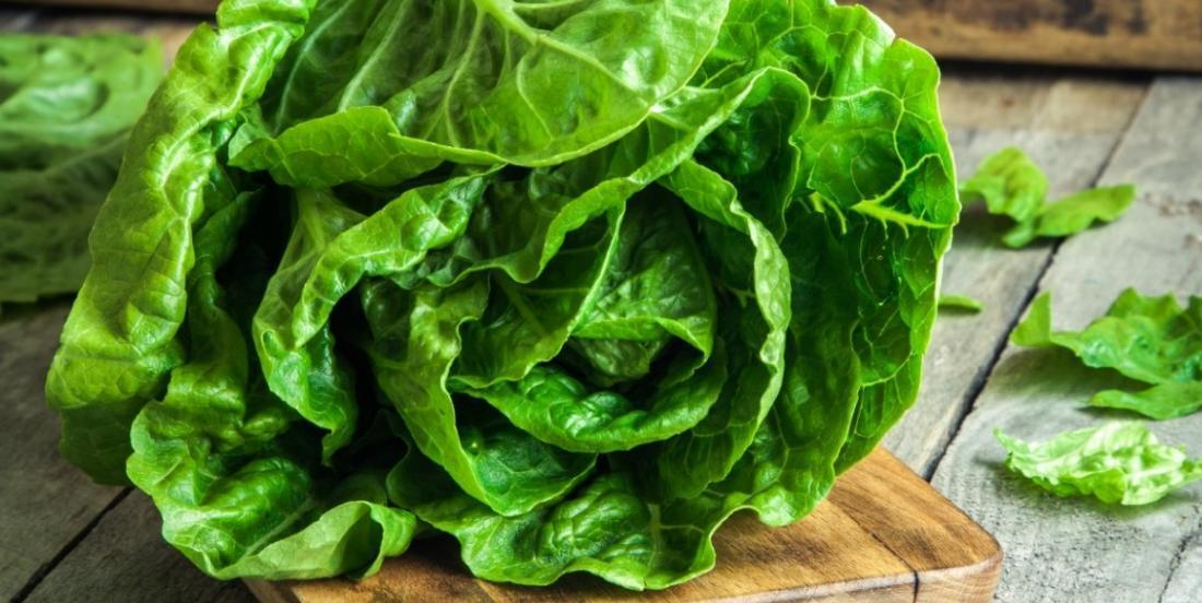 With this method you can keep your salad fresh and crunchy much longer!