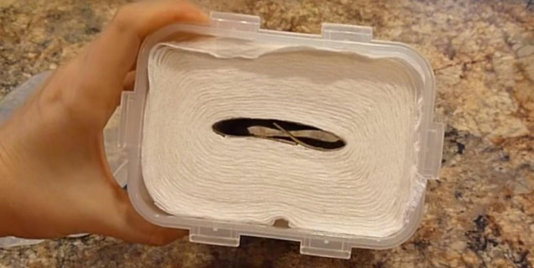 She cuts a roll of paper towel and puts it in a container! Copy her tip and you will save a lot of money!