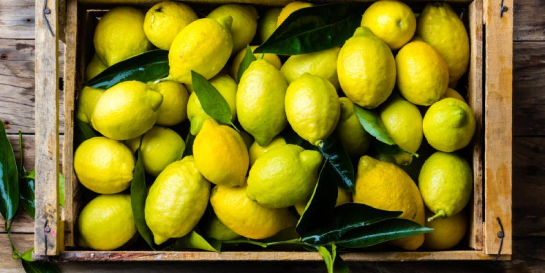 How to keep lemons for several months with a simple bowl of water?