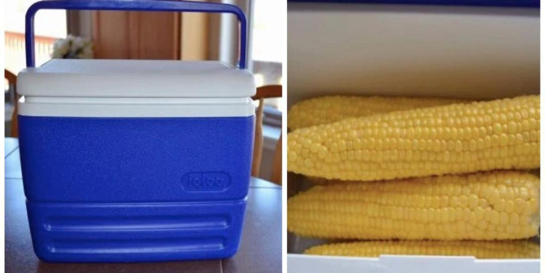 Make corn for a crowd easily using only a cooler!