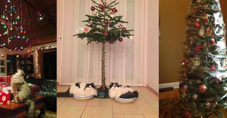 Here are 24 photos that show the lengths pet-owners will go to in order to protect their Christmas trees!